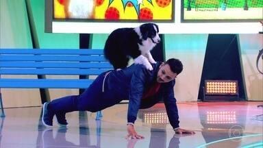 Família Bernardo exibe talento com adestramento de cães - Confira!