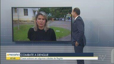 Aumento de casos de dengue preocupam autoridades da região - Casos subiram em algumas cidades da Baixada Santista