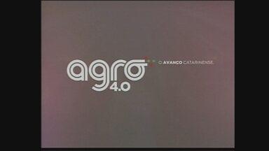 NSC TV Chapecó lança projeto Agro 4.0 - NSC TV Chapecó lança projeto Agro 4.0