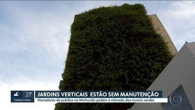 Moradores pedem na Justiça retirada dos murais verdes dos prédios no Minhocão - Os moradores dos prédios da região do Minhocão, na Zona Oeste, estão pedindo a retirada dos jardins verticais devido a falta de manutenção.