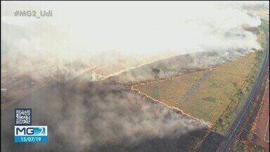 Bombeiros combatem dois incêndios em Uberlândia; um deles atinge área de preservação - Um dos focos fica no Clube Caça e Pesca e o outro em um campo perto da invasão do Fidel Castro.