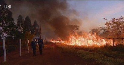 Bombeiros registram 623 incêndios no Triângulo Mineiro em cinco meses - Corporação atendeu a duas ocorrências de grandes proporções em Uberlândia nesta segunda-feira (15). Um deles atingiu uma Área de Preservação Ambiental (APP).