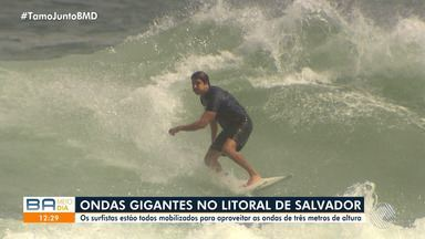 Ondas gigantes e ventos fortes atraem surfistas baianos para a orla de Salvador - Fenômeno conhecido como 'Swell' está deixando as praias da capital baiana lotadas, mesmo em dias de chuva.