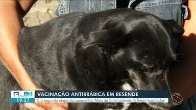 Campanha de vacinação antirrábica acontece em Resende - Objetivo é animar 15.100 animais até novembro.