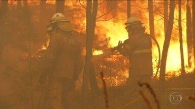 Milhares de bombeiros conseguem controlar 90% dos incêndios florestais em Portugal - Região de Castelo Branco sofre com as chamas desde sábado. 33 pessoas ficaram feridas. Vento, tempo seco e calor dificultam os trabalhos.