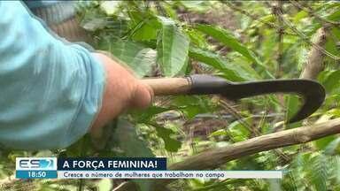 Cresce o número de mulheres que trabalham no campo, no ES - Cada vez mais, as lavouras brasileiras ganham um toque feminino.