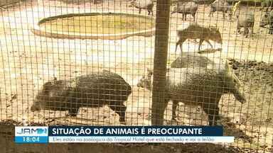 Situação de animais de zoo de hotel abandonado em Manaus é preocupante - Hotel Tropical está fechado e vai a leilão.