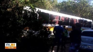 Motorista de ônibus escolar pede controle do veículo e sai da pista em Junqueiro - Veículo levava estudantes, mas ninguém ficou ferido.