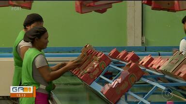 Petrolina fica em 1º lugar no saldo de contratações com carteira assinada em Pernambuco - Foi o que revelou o Cadastro Geral de Empregados e Desempregados (Caged) para este primeiro semestre.