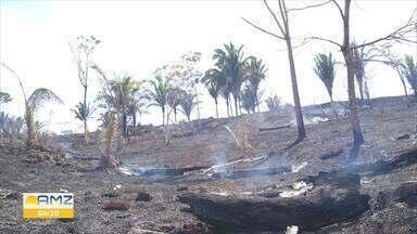 Incêndio atinge reserva florestal de Nova União há três dias - Ainda não se sabe as causas do incêndio