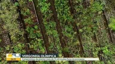 Promesa olimpíca de plantar mudas em homenagem a atletas não virou realidade - Sem dinheiro para o plantio, as mudas foram levadas para Silva Jardim.