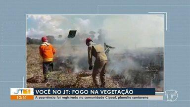 Corpo de Bombeiros registra três casos de incêndio em vegetação no domingo, em Santarém - Um dos casos contou com a ação de quatro militares, que precisaram de duas horas para controlar as chamas.