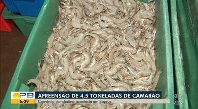 PRF apreende 4,5 toneladas de camarão produzidas clandestinamente, na PB - Produto foi apreendido em fábrica e ponto de distribuição, na Grande João Pessoa.
