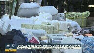 Passageiro de ônibus é preso com 100 kg de maconha e cocaína em Campinas - Drogas seriam levadas para cidade de Planalto, na Bahia.