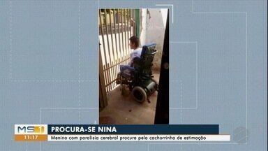 Você viu a Nina? Menino com paralisia cerebral procura por cachorrinha desaparecida - Animais podem ajudar no tratamento de doenças