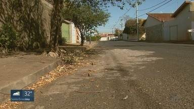Podas espalhadas pelas ruas de Ribeirão Preto viram motivo de reclamação de moradores - Problema no Jardim Benedeti foi resolvido depois de três meses.