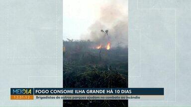 Fogo consome Ilha Grande há 10 dias - Brigadistas de outros parques ajudam a combater o incêndio que já queimou quase 47 mil hectares.