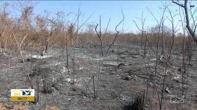Queimadas causam prejuízos para moradores da zona rural do Sul do MA - Na cidade de Balsas o número de focos de incêndio aumentou nos últimos dias, diz INPE.