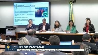 Audiência na Câmara Federal discute o uso do Pantanal - Lei do Pantanal está em discussão em Brasília.