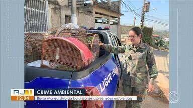 Guarda Ambiental divulga balanço de apreensões de aves em Barra Mansa - Foram 71 casos em 2018 e quase 40 em 2019.