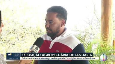 Exposição Agropecuária acontece em Januária - Feira continua até domingo, no Parque de Exposições Astério Itabayana.