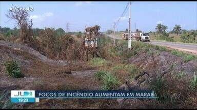 MPPA cobra mais rigor no combate às queimadas em Marabá, no PA - Segundo os Bombeiros, as ocorrências aumentaram e a Defesa Civil formou uma brigada.