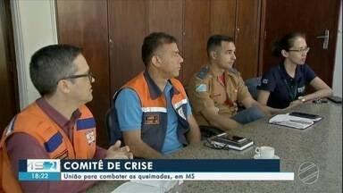 União para combater as queimadas em MS - Ibama, Prevfogo, Bombeiros, Defesa Civil e Secretaria de Meio Ambiente se uniram para gerenciar a situação.