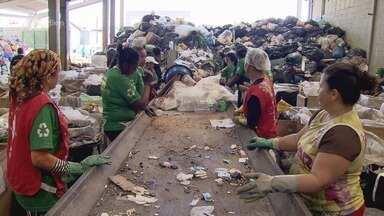Ecoponto em Praia Grande, SP, realiza importante trabalho de reciclagem - Equipamento é destinado para o descarte correto de lixo reciclável.