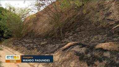 Polícia prende homem que ateou fogo em área de vegetação, em Colatina - Caso aconteceu na noite desta sexta-feira (23).