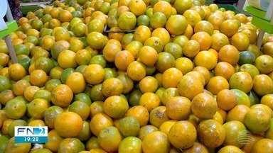 Redução no preço das frutas resulta em alívio para o bolso do consumidor - No caso da laranja, o quilo passou a ser vendido, em média, por R$ 1,44, em Presidente Prudente.