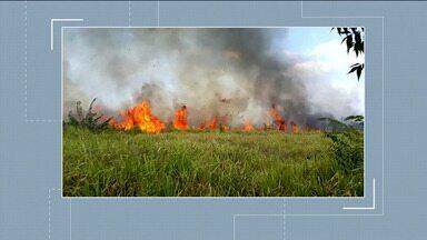 Comandantes do Corpo de Bombeiros e exército sobrevoaram áreas com focos de incêndio no MA - Objetivo é ter uma real dimensão das áreas afetadas e elaborar um plano de combate às queimadas.