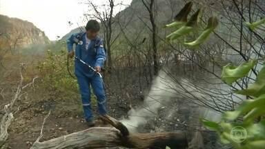 Evo Morales se junta a bombeiros e voluntários para tentar apagar fogo na Amazônia - Presidente da Bolívia disse que grupo conseguiu apagar quatro focos de incêndio em Santa Rosa, uma das áreas afetadas pelas queimadas no país.