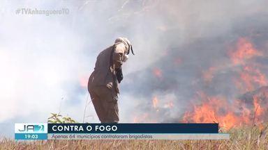 Menos da metade das cidades do Tocantins tem brigadistas para combater queimadas - Menos da metade das cidades do Tocantins tem brigadistas para combater queimadas