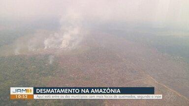 Agosto tem o maior número de focos de queimadas na Amazônia dos últimos 9 anos - Mês de agosto teve 30.901 focos de queimadas no bioma Amazônia. Recorde para o mês foi batido em 2005, com 63.764 registros, mas número não passava de 22 mil desde 2010.