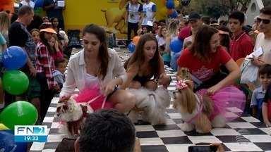 12º Mania de Cão movimenta o Parque do Povo - Evento da TV Fronteira foi realizado em Presidente Prudente.