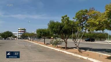 6º Encontro Nordestino de Arborização urbana é realizado em Petrolina - O evento discute temas relacionados ao plantio de árvores e importância de manter a arborização nos centros urbanos e rurais