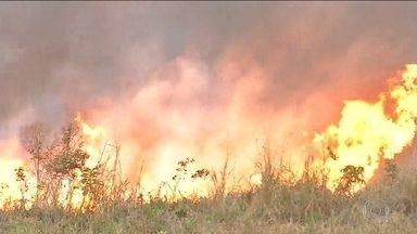 Fogo devasta 12% do Parque Nacional da Chapada dos Guimarães - Há mais de uma semana Cuiabá está coberta de fumaça das queimadas. Cerrado já registrou 28 mil focos de calor desde janeiro, o que representa 30% das queimadas do país.