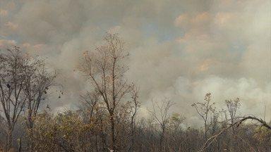 Clima seco favorece aumento das queimadas no sul do Maranhão - O Mirante Rural deste domingo (8) mostrou o risco no aumento de queimadas por causa do clima seco em todo o Maranhão.