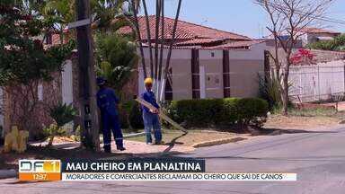 Moradores e comerciantes de Planaltina reclamam de mau cheiro - Segundo os moradores, o problema começou depois que a Caesb instalou uns canos na rua.