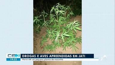 Homem é preso com drogas e aves apreendidas em Jati - Confira mais notícias em g1.globo.com/ce