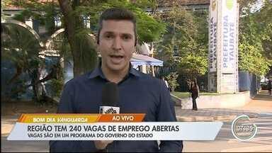 Região tem 240 vagas de emprego abertas - Vagas são em um programa do governo do estado