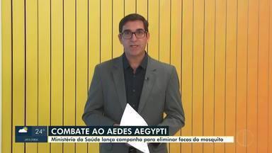 Ministério da Saúde lança campanha de combate ao mosquito Aedes aegypti - Neste ano, foram registrados mais de 474 mil casos prováveis de dengue, em Minas Gerais.