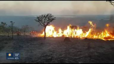Umidade cai a 11% e DF entra em estado de emergência - O tempo seco também contribuiu para os incêndios florestais.