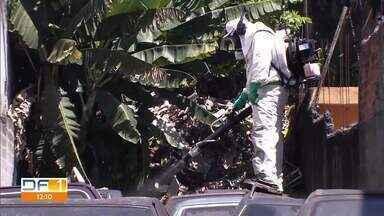 Liminar autoriza agentes de saúde em casas e lotes abandonados - Medida é para ajudar trabalho de combate a dengue no DF.