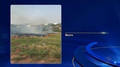 Queimada atinge área de vegetação perto de residencial em Bauru - O fogo começou no início da tarde deste sábado (14) e se espalhou por uma grande área de mato. A fumaça podia ser vista de longe, mas segundo os bombeiros, o incêndio não atingiu nenhuma área habitada.