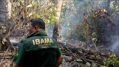 Operação contra queimadas ilegais prende 18 pessoas em Mato Grosso - Os agentes apreenderam 19 motosserras, três caminhonetes, duas motos e 600 litros de combustível, e aplicaram multas por crimes ambientais no valor de R$ 7 milhões.