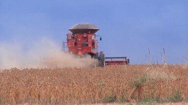 Mirante Rural destaca cenário animador de agricultores de soja no Maranhão - Programa da TV Mirante mostrou ainda a necessidade de um imposto para quem tem propriedade rural.