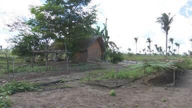 Imposto para quem tem propriedade rural tem prazo até setembro - O Mirante Rural apresenta os detalhes para esclarecer sobre o Imposto Territorial Rural.