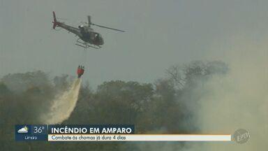 Corpo de Bombeiros aponta dificuldades em combate a incêndio em mata de Amparo - Bombeiros e Águia da Polícia Militar combatem as chamas desde quinta-feira (12). Animais silvestres podem estar ameaçados.