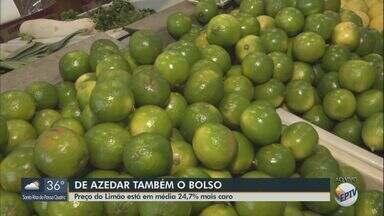 Preço do limão está em média 24,7% mais caro em setembro - Reajuste é devido ao tempo seco.